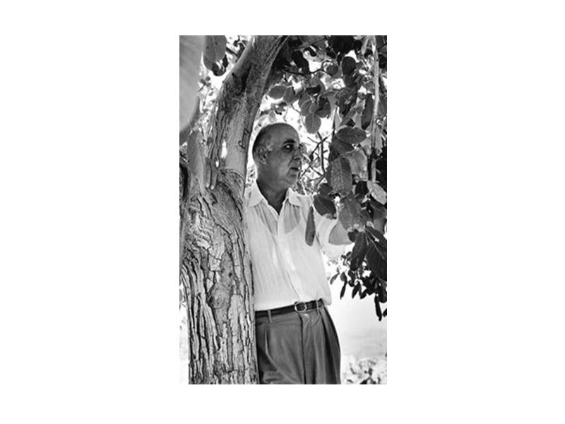 Γιώργος Σεφέρης, «Επί ασπαλάθων...»