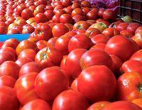 Ελληνική ντομάτα