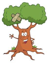 πληγωμένο δέντρο