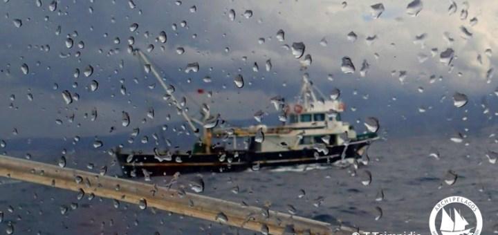 Παγκόσμια Ημέρα Ωκεανών, γιατί η Ε.Ε. στηρίζει την καταστροφή της Μεσογείου;