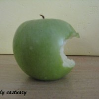 "Three famous ""Apples""...     :)"