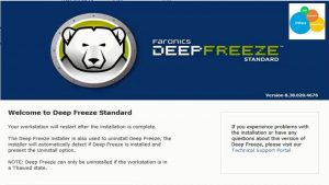 Deep Freeze Standard Key