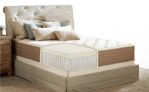 Eco-terra mattress review coils and latex