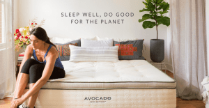 Avocado Green Mattress Review 2019 1