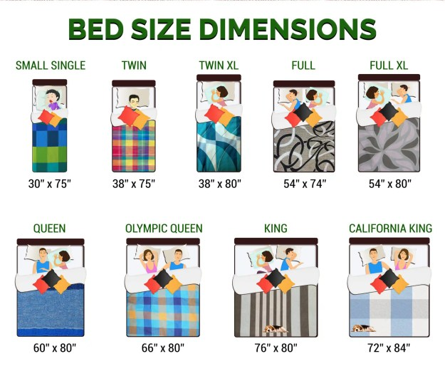 Bed size dimensions infographic guide