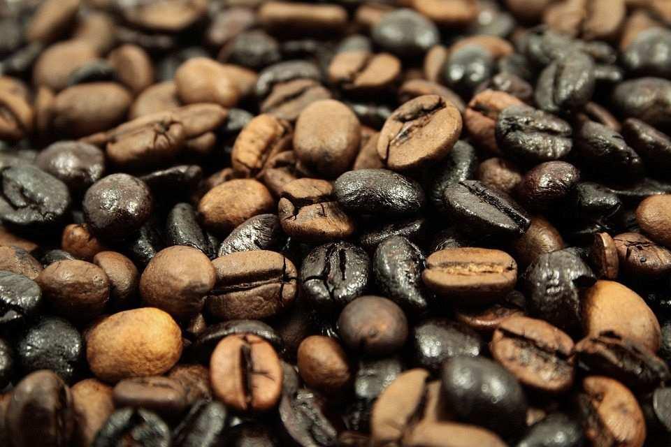 kavrulmuş kahve çekirdekleri