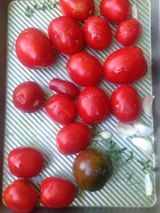 tomatoes raw copy
