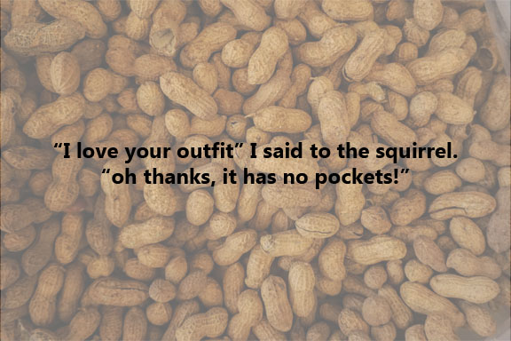 Squirrels Need More Pockets