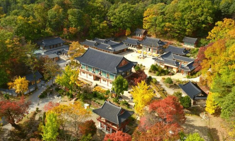 Bongseonsa Temple Stay | Namyangju-si, Gyeonggi-do