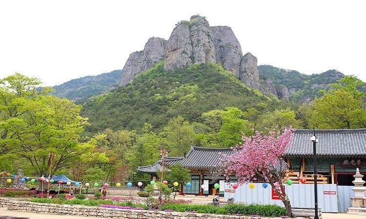 Juwangsan Mountain | Cheongsong-gun, Gyeongsangbuk-do