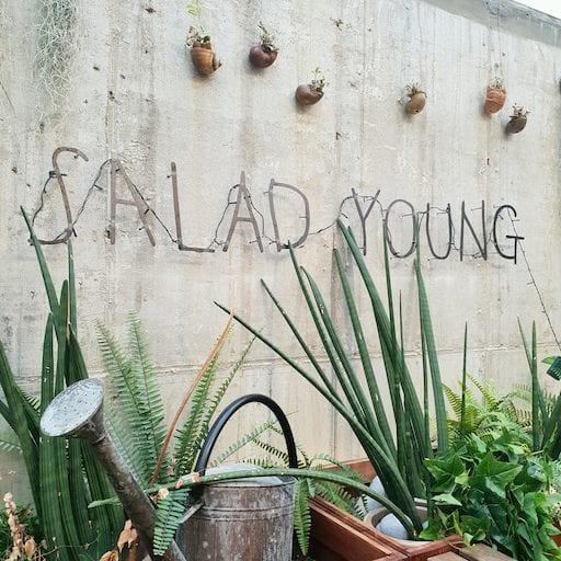 Salad Young | Gangnam-gu, Seoul