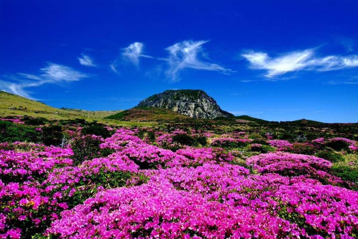 https://10mag.com/directory/entertainment/listing/hallasan-mountain-cheju-jeju-do