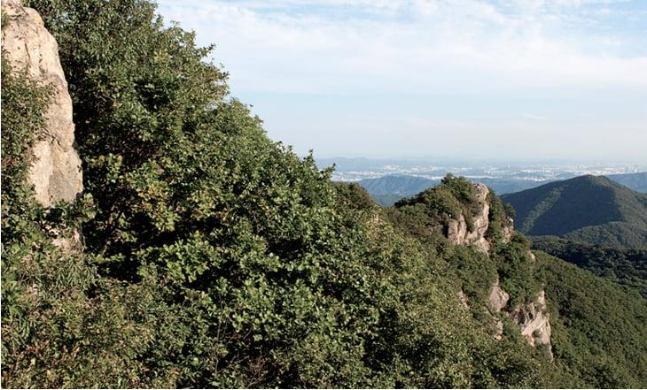 cheonggyesan-mountain