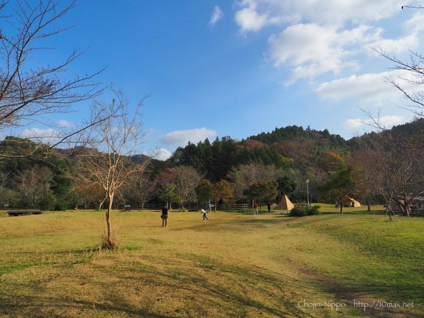 稲ヶ崎キャンプ場, フリーサイト