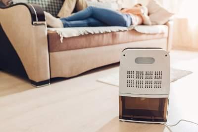 living room dehumidifier