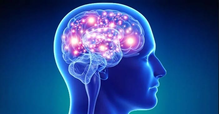 On Fire! 10ma Is Revised $1.88 Epc On Email Lists & 4.7% Conversions  Image of neuroplasticity