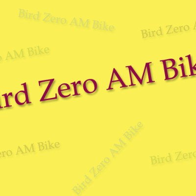 Everything you Need to Know About the Bird Zero AM Bike