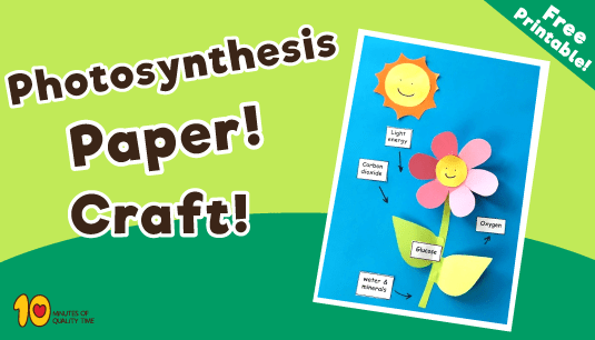 Photosynthesis Craft For Kids 10 Minutes Of Quality Time