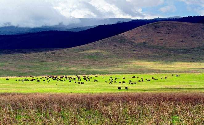 Most Famous Natural Landmarks In Africa: Ngorongoro Crater, Tanzania