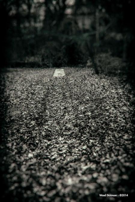 path-2 copy