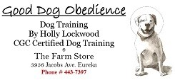 Dog training at The Farm Store