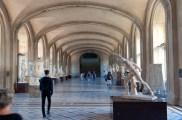 Galerie Daru