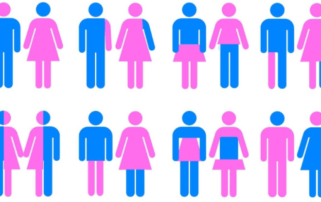 gender-politics