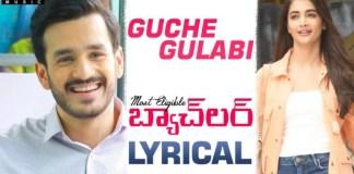 Guche Gulabi Song Lyrics