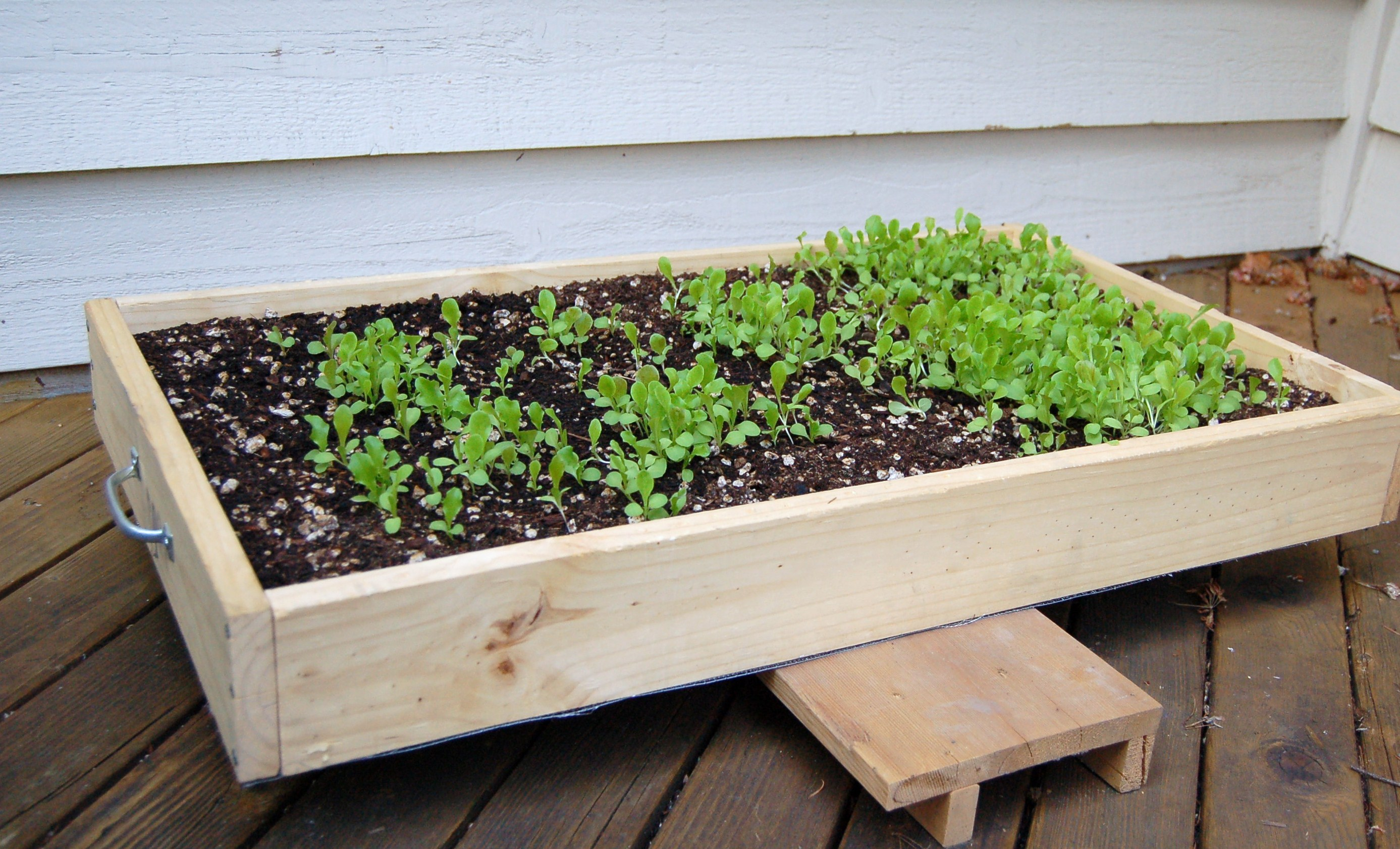 Salad box concept from Organic Gardening magazine
