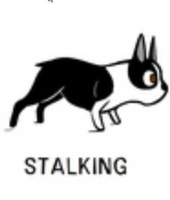 12stalking-e1438912781102 (1)