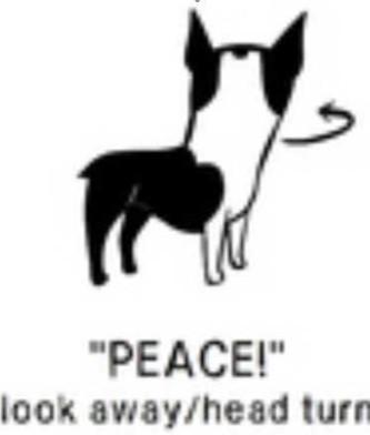 6peace-e1438912304169