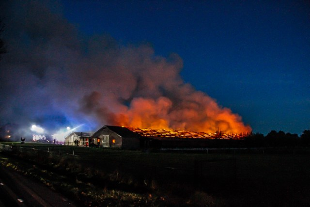 [UPDATE + VIDEO] Kippenschuur met 20.000 kippen in brand Barneveld