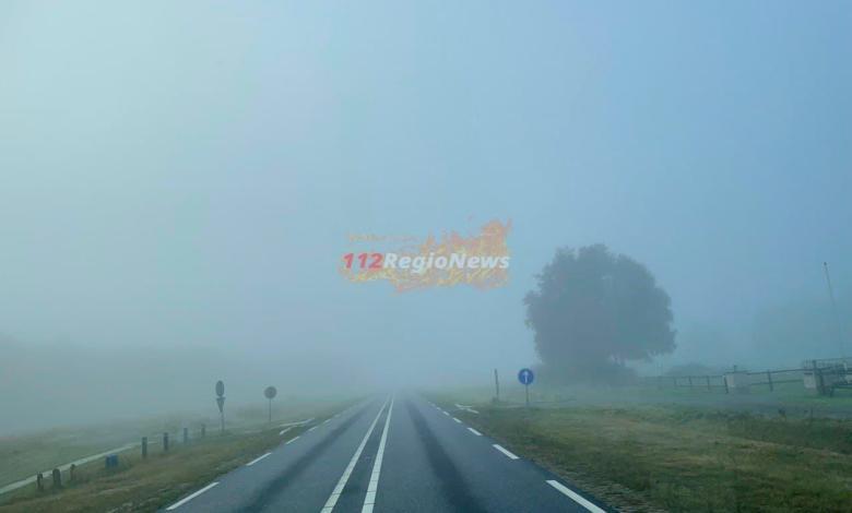 photo 2021 10 07 09 02 34
