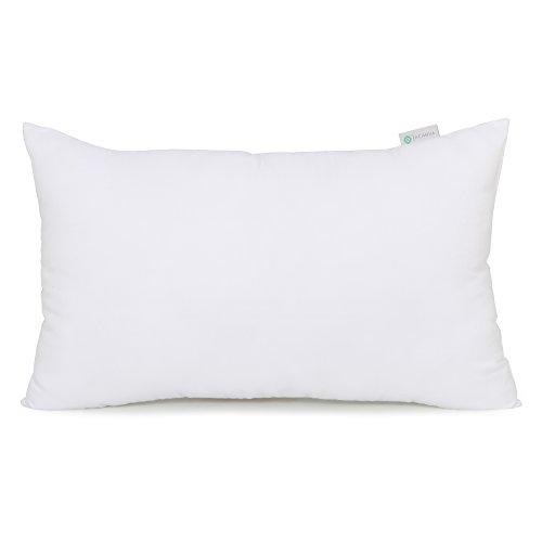 20x12 pillow insert online