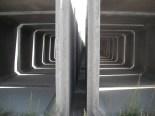 Simetría bilateral
