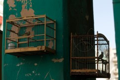 Industria street, Havana Photograph: Georgia Korossi/11polaroids