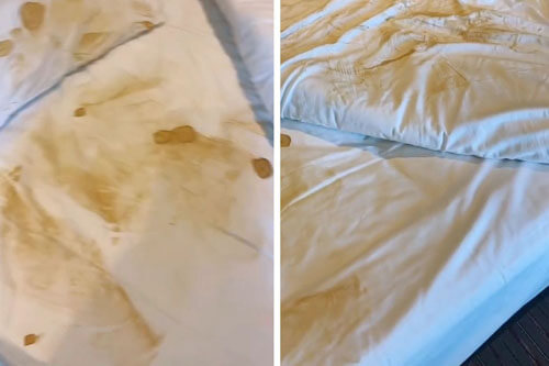 Because of a fake tan, a woman disgraced herself in front of the hotel maids