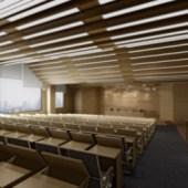 Conference Room Ladder