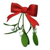 Mistletoe Bow Tie