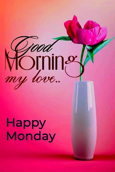 Good Monday Morning