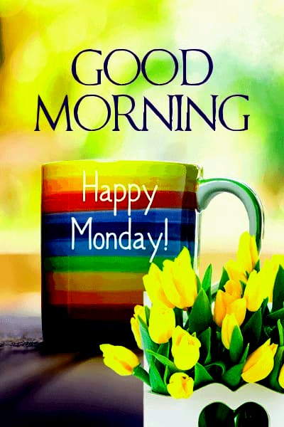 Good morning monday HD