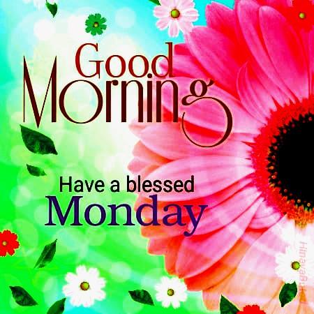 Happy Good morning monday