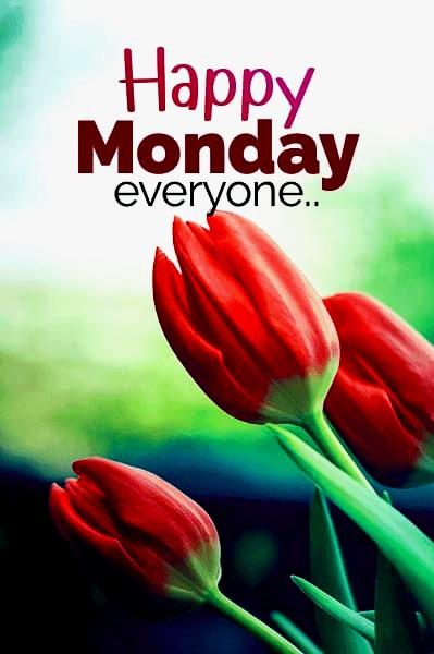 Happy Monday Pics