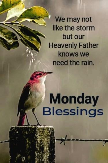 Happy Monday Wishes