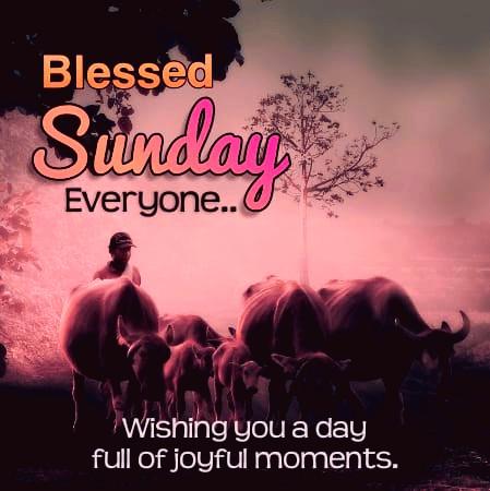 happy sunday blessing
