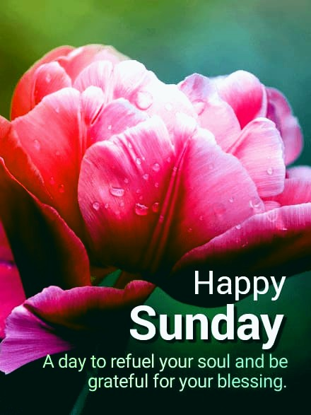 happy sunday images with flower