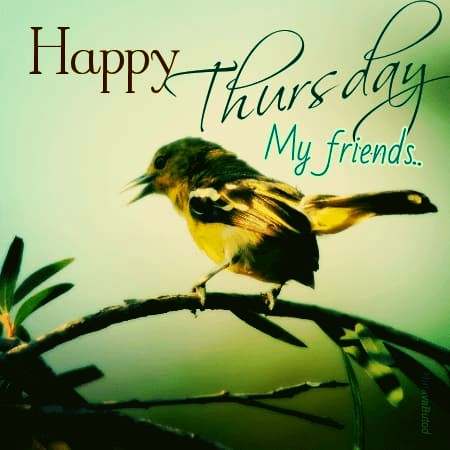 happy thursday for friends
