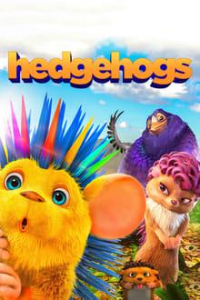 hedgehogs  full hd
