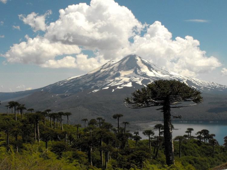 Chile 20