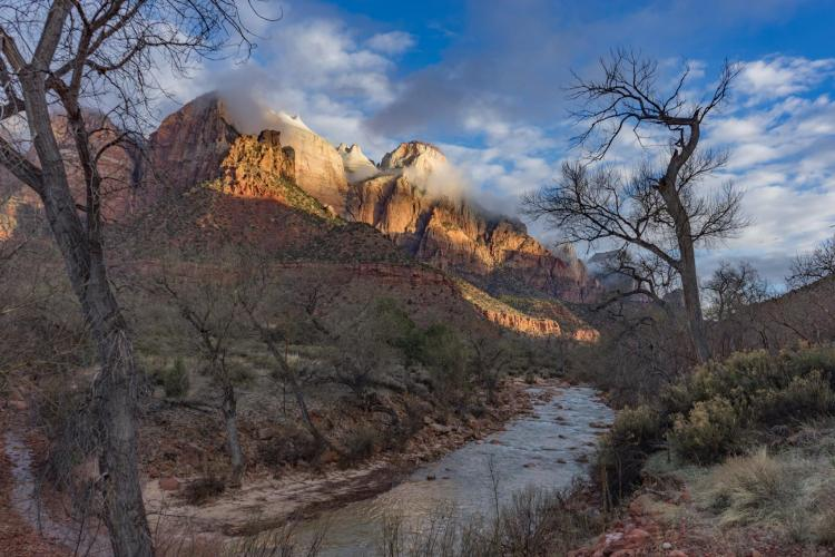 zions 104